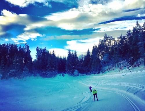 Arctic Circle Race Training Update